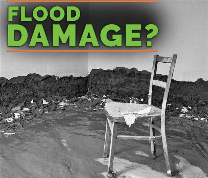 Storm Damage Flooded? Don't Let Mold Take Hold